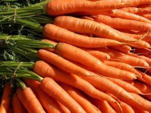 Морковь среднепоздняя F1 тип Нерак