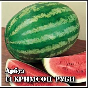 Арбуз Кримсон Руби F1 (SAKATA)