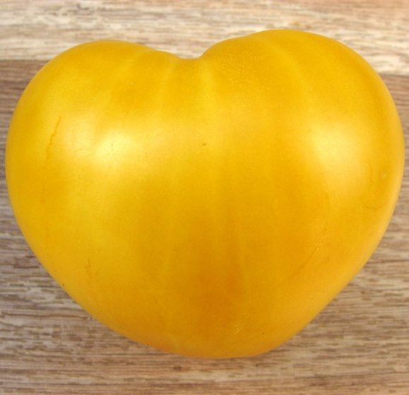 Томат Бычье сердце золотое