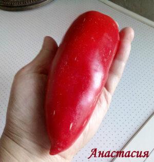 Перец Анастасия